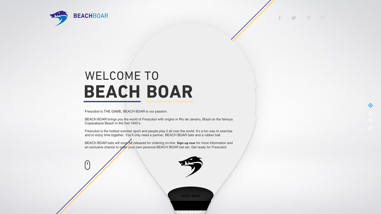 Beachboar