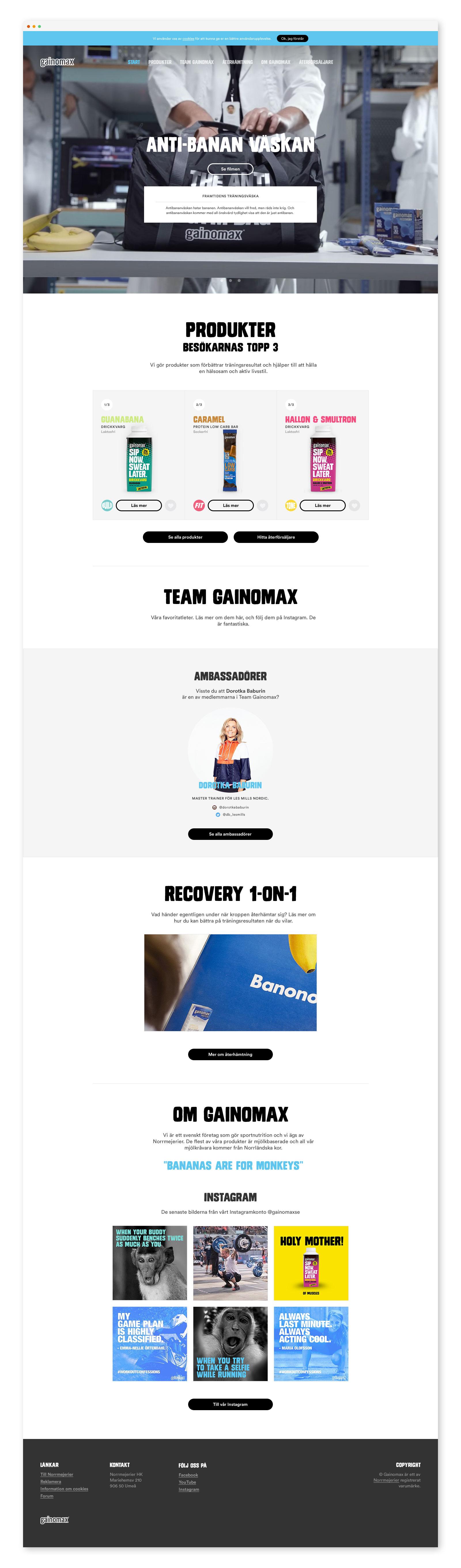 Gainomax Site Desk Start